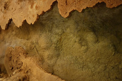 The Amazing Discovery and Natural History of Carslbad Caverns