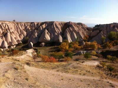 Cappadocia Hillside with fall trees
