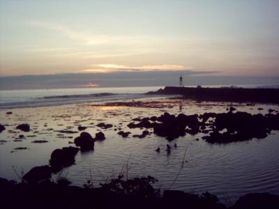 Island and ocean