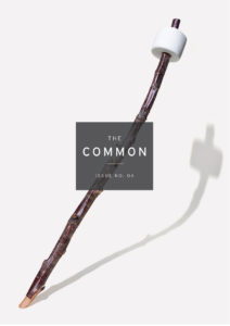 The Common Issue 4