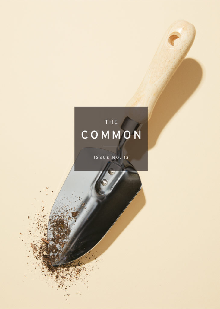 The Common Issue 13