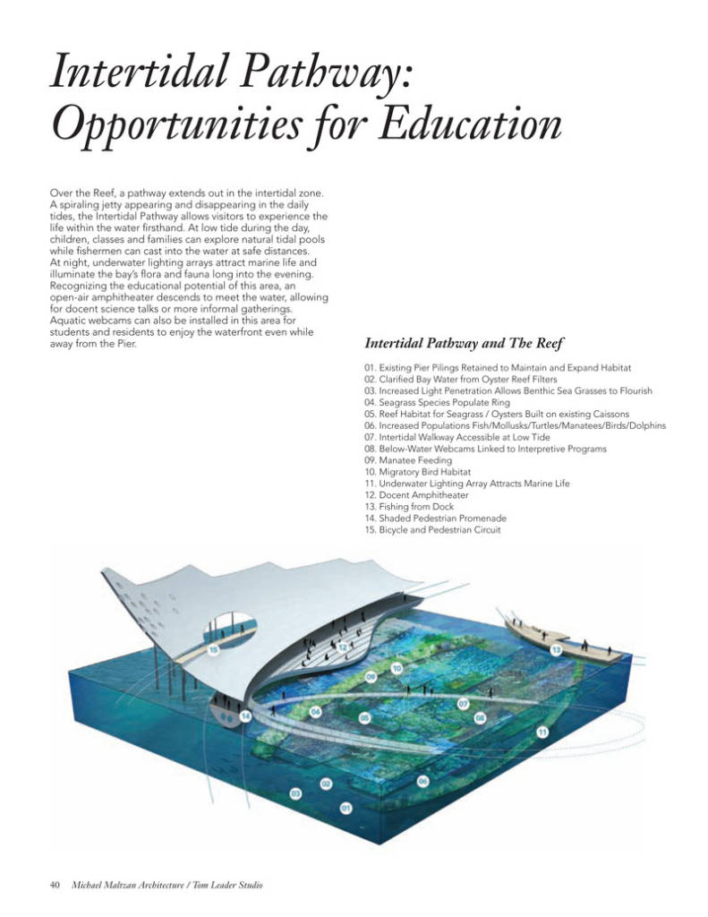 Intertidal Pathway: Opportunities for Education