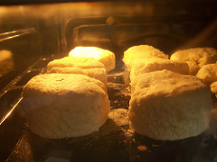 Biscuits baking in an oven