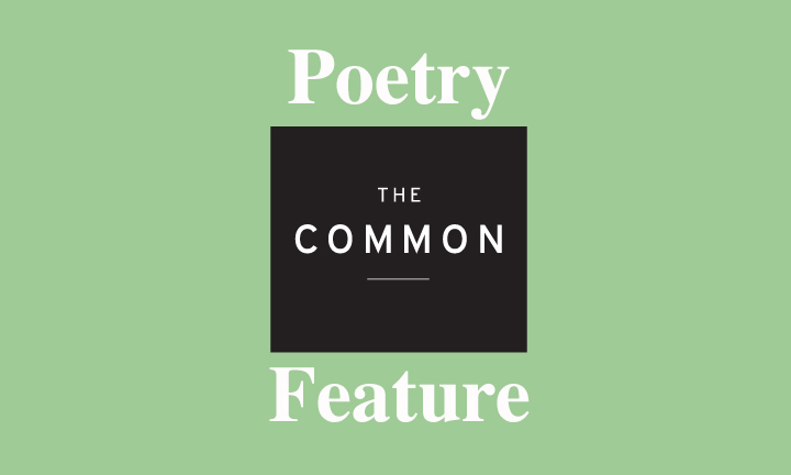 The Common logo (black box) in between POETRY and FEATURE, in white print on a light green background