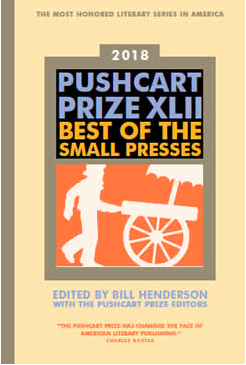 The Common's Nominations for the Pushcart Prize