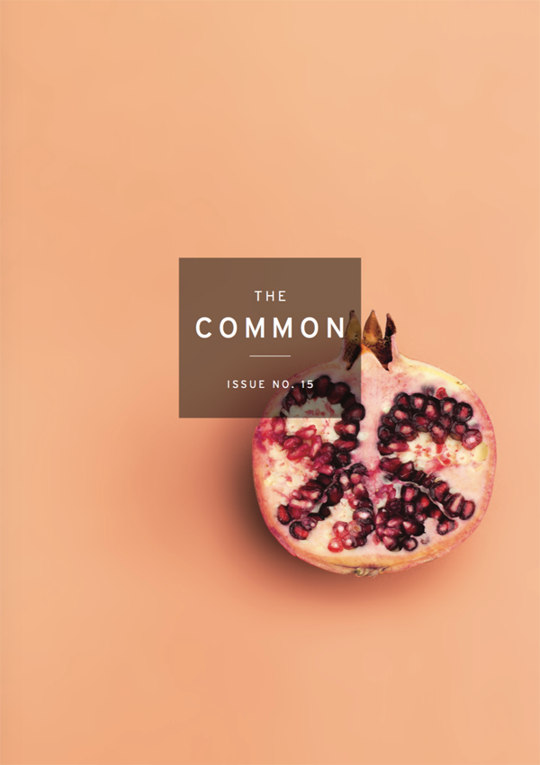 Cover of The Common Issue 15, with a pomegranite cut in half, against a peach-colored background
