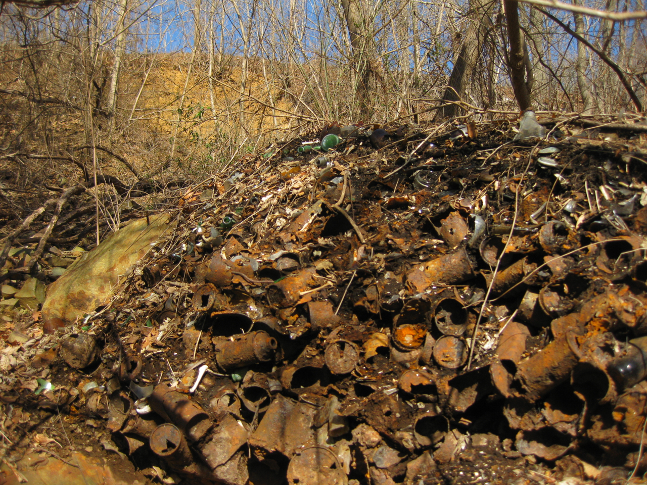 junk pile in the woods