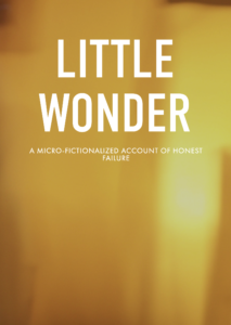 Little Wonder cover