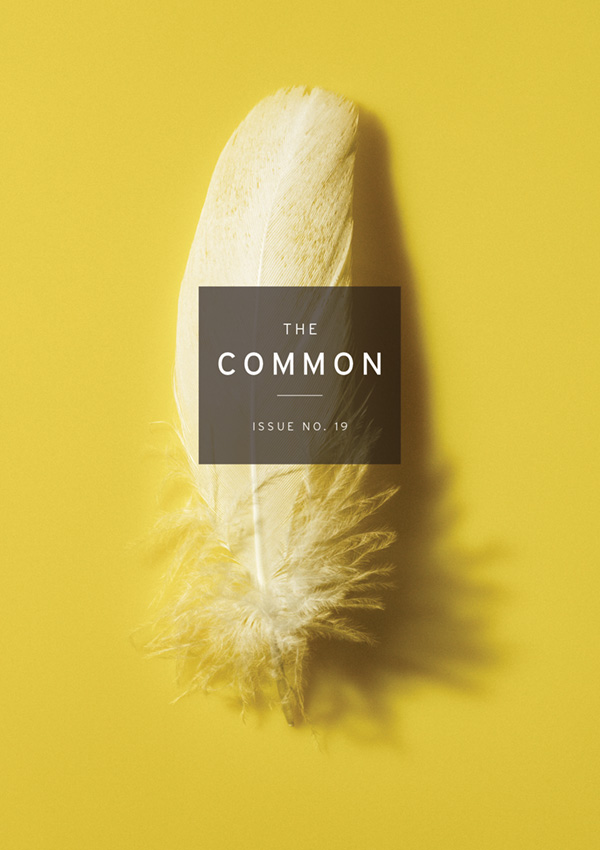 Common Issue 19 cover with white feather on yellow background