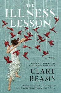 Image of book cover of The Illness Lesson.