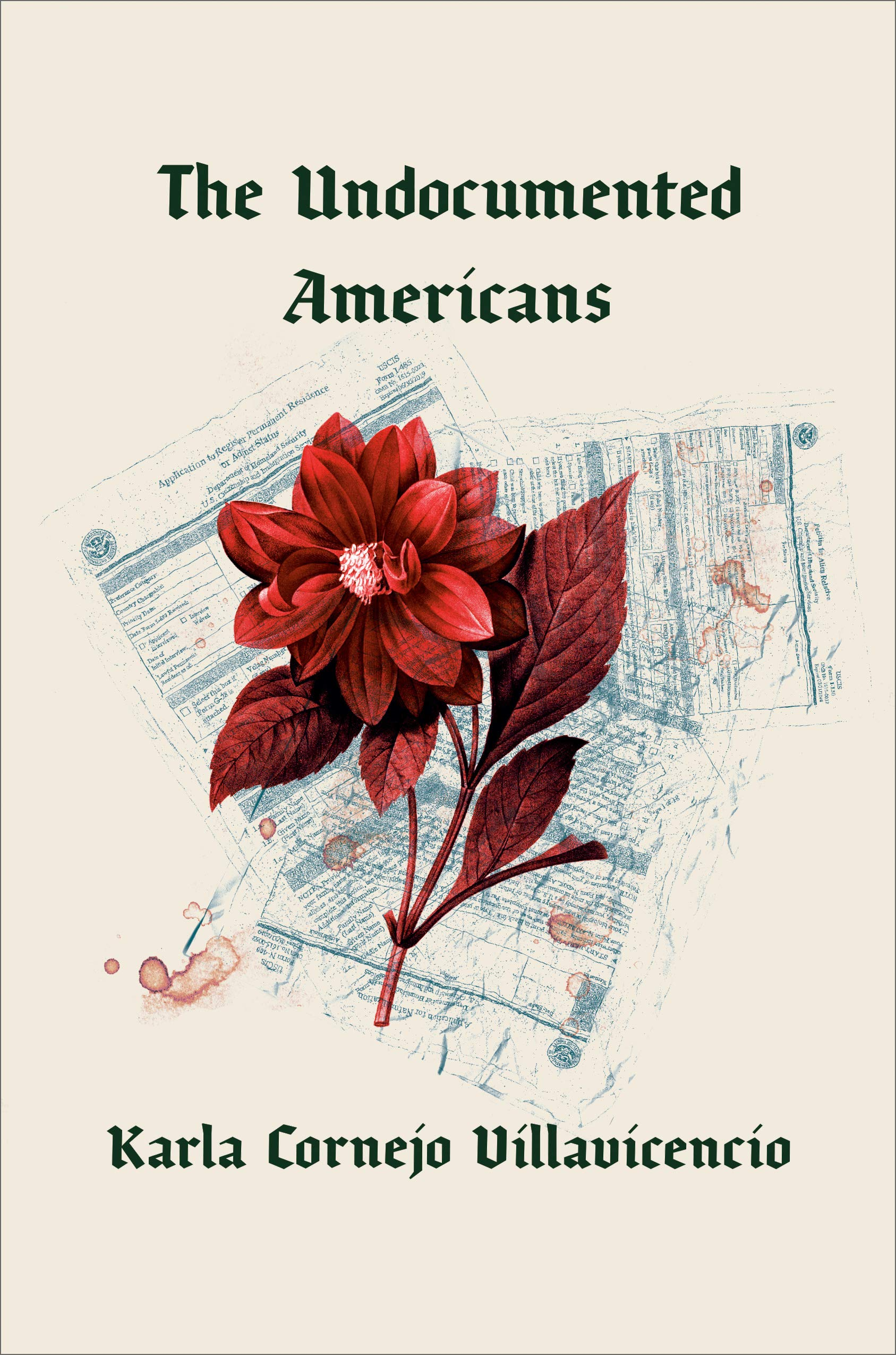 The Undocumented Americans book