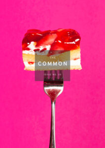 The Common Issue 20 cover showing a piece of cake on a fork against a bright pink background