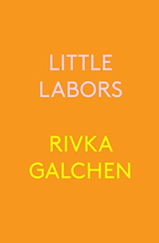 cover of Little Labors