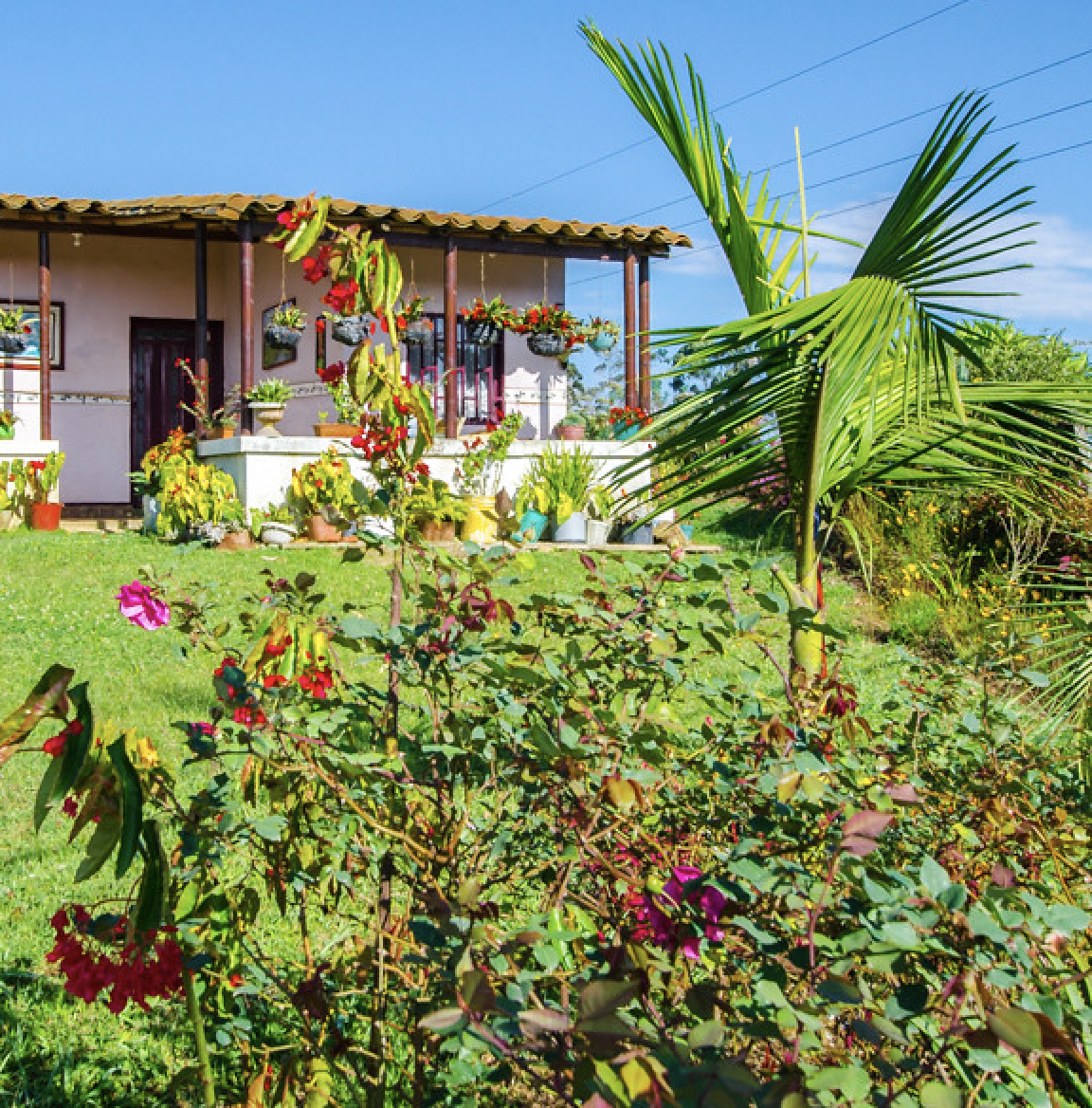 House in Colombia