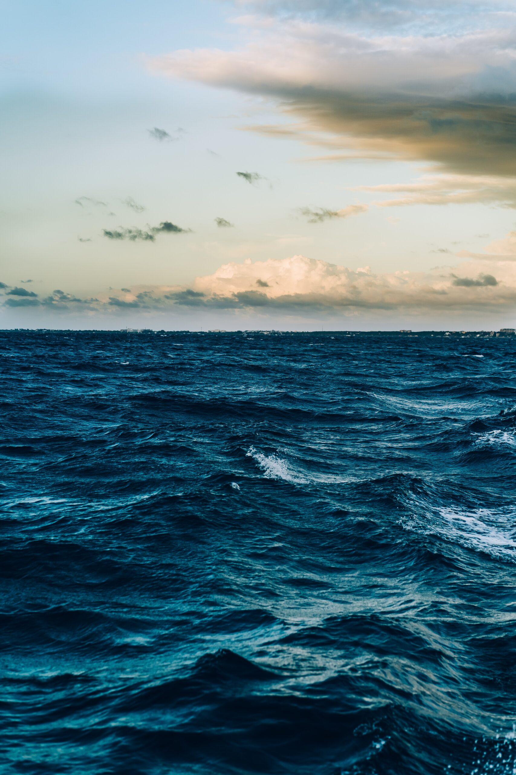 The Sea Dreams of Us